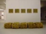 Regina Hellwig-Schmid: Stroh zu Gold